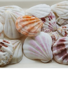 Beach Theme Shell Unique Wedding Décor Set of 4 Packs