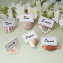 Ocean Breeze Seashell Place Card Holders  (051074067)
