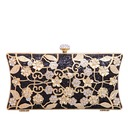 Classical Polyester/Alloy Clutches (012067679)