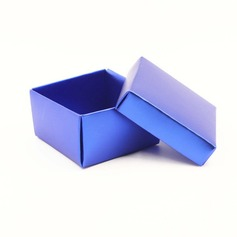 Simple Cuboid Favor Boxes (Set of 12)
