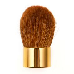 Golden Blush Brush