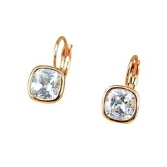 Shining Alloy Ladies' Earrings