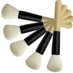 High Quality Blush Brush (5 Pcs)