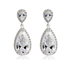Gorgeous Zircon/Platinum Plated Ladies' Earrings (011051014)